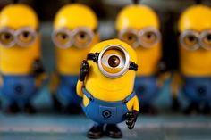 Minions party - Minions toys