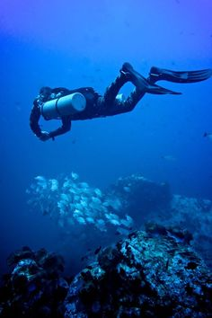 Welcome to Tech diving in Thailand with great CCR, Sidemount diving and courses from TDI SDI SSI here on Koh Tao Scuba Diving Equipment, Scuba Diving Gear, Cave Diving, Diving Quotes, Diving Board, Diving Suit, Maui Vacation, Big Island Hawaii, Koh Tao
