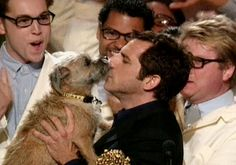 MTV MovieAwards: Everyone in the crowd puts on reading glasses to get a better look at Ben Stiller frenching Puffy The Dog as they celebrate their . Tv Awards, Mtv Movie Awards, Westies, Chihuahuas, Ben Stiller, Border Terrier, Brown Dog, Animals Beautiful, Comedians