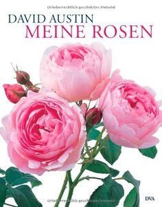 Meine Rosen von David Austin http://www.amazon.de/dp/3421036179/ref=cm_sw_r_pi_dp_WSzdub0RF3206