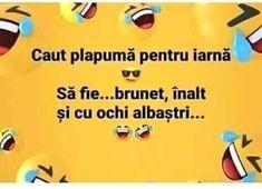 Wise Words, Haha, Happiness, Humor, Facebook, Funny, Bonheur, Ha Ha, Humour