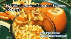 10 Utilisations Géniales Des Écorces d'Orange.