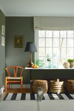 Organized Living Room With Dark Green Wall And Orange Chair