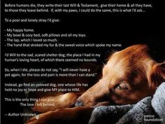 Sob! And why I will always have dogs even though the loss is so tough