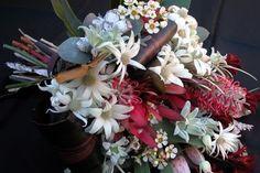 Flannel Flower, Waxflower and Grevillea, I really miss my aussie flower garden.