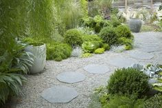 Landscape designer Flora Grubb created a winding path to her Berkeley home