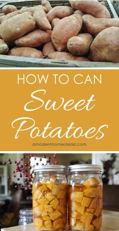 Sweet potatoes are a great thing to have on hand for the fall holidays! And since they usually go on sale in the fall, this is a great time to stock up and can enough for the whole year! Read on to get the full details on how to can sweet potatoes for you Home Canning Recipes, Canning Tips, Cooking Recipes, Canning Water, Pressure Canning Recipes, Canning Process, Pressure Cooking, Canning Food Preservation, Preserving Food