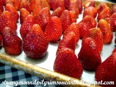 Freezing Strawberries - Strangers & Pilgrims on Earth: A Crate of Strawberries ~ Miscellaneous Musings