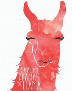We dont want your drama... save it for your llama! Hang this proudly in your home to remind your roommates, family members and mail person to