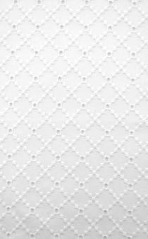 Cotton Eyelet in White