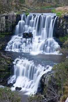Famous Ebor fallsl in New South Wales state of Australia near Armida , Pacific Highway, Waterfall Wallpaper, Fall Images, Waterfall Fountain, What The World, New South, Walking In Nature, Nature Wallpaper, South Wales