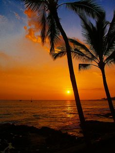 ✯ Sunset In Paradise