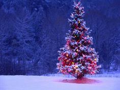 rbol de navidad iluminado sobre la nieve
