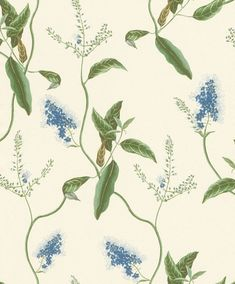 605730 - Wallpaper of the collection Passepartout by Rasch with leaves motif in cream and blue. How To Hang Wallpaper, Wallpaper Paste, Green Wallpaper, Wallpaper Online, Wallpaper Samples, Flower Wallpaper, Wall Wallpaper, Pattern Wallpaper, Contemporary Wallpaper