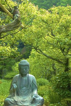 Buddha statue at Tōkei-ji Temple, Kita Kamakura, Japan (by Katie & Ian).