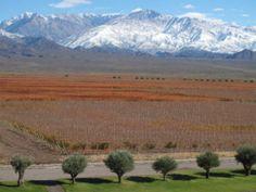 •Naturaleza mágica, imponente y maravillosa. ¿Conoces la #RutaDelVino en Mendoza?• Hacé click en www.chicasguapas.tv porque te compartimos los mejores datos para que planifiques tu próximo fin de semana largo empezando en la bodega Clos de los Siete de Michel Rolland. ¡Chín, chín! Xx, CG