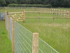 Reasonably Priced Dog Proof Fencing Farm Fence Pasture Diy