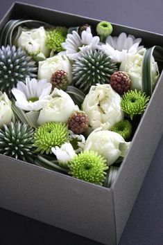 Flower box by Mr. Nonnon - rose (white macaroon), Mum (Prince, Primo), Ruritamaazami (blue glow), Blackberry miscanthus