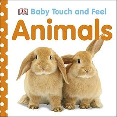 Baby Touch and Feel: Animals by DK https://smile.amazon.com/dp/0756634687/ref=cm_sw_r_pi_dp_x_U5Rqzb63N0Y8H