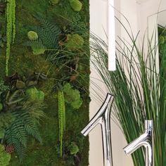 Agencement végétal, végétaux stabilisés, mur végétal, mousse stabilisée. Réalisation Adventive. Interior plant Designer