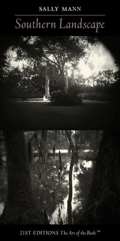 southern gothic definition