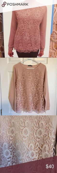 bfca470b2ff68 Shop Women s Adrianna Papell Pink size L Sweatshirts   Hoodies at a  discounted price at Poshmark. Adrianna Papell soft pink sweatshirt with lace  overlay.