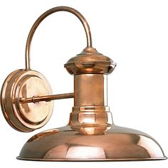 Progress Lighting P5722-14 Brookside 1-light Wall Lantern (Cognac), Brown (Stainless Steel)