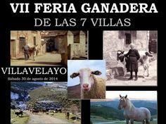 La VII #Feria Ganadera de las 7 Villas se celebrará el sábado, 30 de agosto en la localidad de #Villavelayo, #LaRioja.