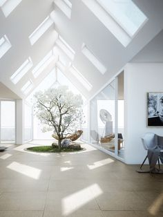 Vaulted Skylights
