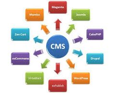 List of 20 best companies offering #CMS #development solutions.. #Wordpress, #Joomla, #Drupal and more
