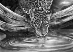 Pencil Drawing of water | How To Draw Water With Pencil My latest drawing almost