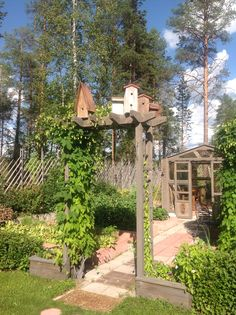 Birdhouse and kitchen garden. Arbor and greenhouse.