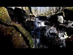 Small Mountain Stream - Relaxing Full HD Video - YouTube