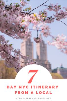 Wondering what you can see in New York City in 7 days? This New York City blog shows you everything you need to see when spending a week in NYC.