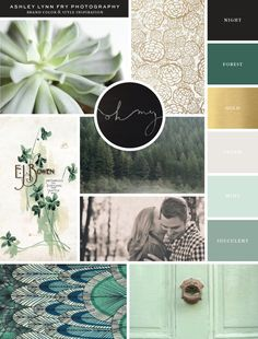 "The Project Ashley Lynn Fry is an amazingly talented wedding photographer who also has an undying love for styling and coordinating events gorgeous events.  Ashley was looking for a handwritten logo that highlighted her initials ""ALF"" since her name is a pretty long one.  Succulents inspired the green focused color palette and we added in …"