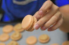 Making Macaron Shells