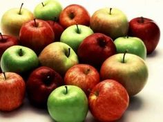 The Life Cycle of Apple Trees