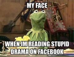 # kermit ¸¸.•*¨*•☆ funny facebook comments  ☆ º ☆.¸¸.•´¯`♥  K@marinti
