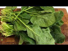 ⭕/ YAĞ❌ ISPANAĞI MUTLAKA BU ŞEKİLDE DENEYİN PİŞMAN OLMAZSINIZ - YouTube Lettuce, Spinach, Soup, Vegetables, Youtube, Vegetable Recipes, Soups, Youtubers, Salads