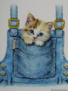 Fond écran mobile animé gratuit - petit chaton