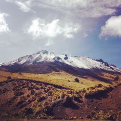 El Nevado de Toluca. This is an inactive volcano about 10,000 feet high. Snow can be found almost year round. For more info on how to make this trip http://cocinax.com/travel/toluca-edmex