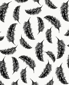 Feather pattern in black and white Textile Patterns, Cool Patterns, Shape Patterns, Beautiful Patterns, Print Patterns, Pattern Print, Textiles, Architecture Artists, Feather Pattern