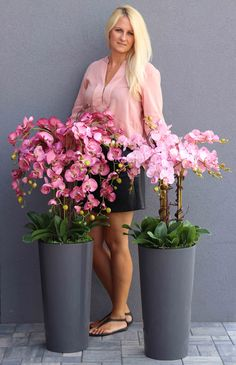 Potted Orchid Centerpiece, Orchid Flower Arrangements, Artificial Flower Arrangements, Flower Centerpieces, Artificial Flowers, Bouquet Wrap, Diy Bouquet, Orchids Garden, Succulents Garden