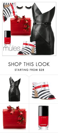 """""""Untitled #612"""" by chanlee-luv ❤ liked on Polyvore featuring Yves Saint Laurent, Pollini, Nancy Gonzalez and Chanel"""