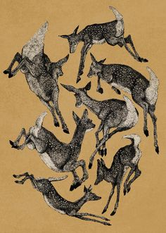 Spring Fawns by John Stortz : for Sydney Bambi, Deer Illustration, Deer Art, Black White, Oh Deer, Art Graphique, Oeuvre D'art, Art Inspo, Painting & Drawing