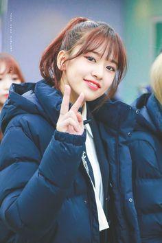 yujin — iz*one Kpop Girl Groups, Korean Girl Groups, Kpop Girls, Yuri, My Girl, Cool Girl, Secret Song, Honda, Survival