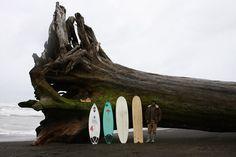 Redwood Tree & Surfboards