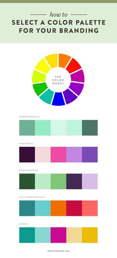 How to select a color palette for your branding | Spruce Rd. #color #inspiration