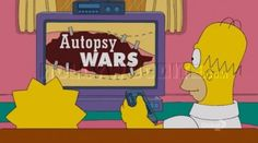 """Fake reality show """"Autopsy Wars"""" on The Simpsons."""