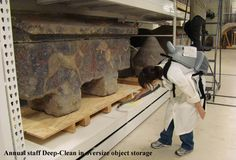 Preventive Conservation | The Field Museum